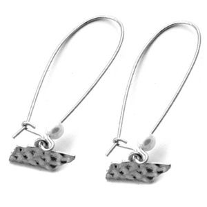 State earring - Tennessee
